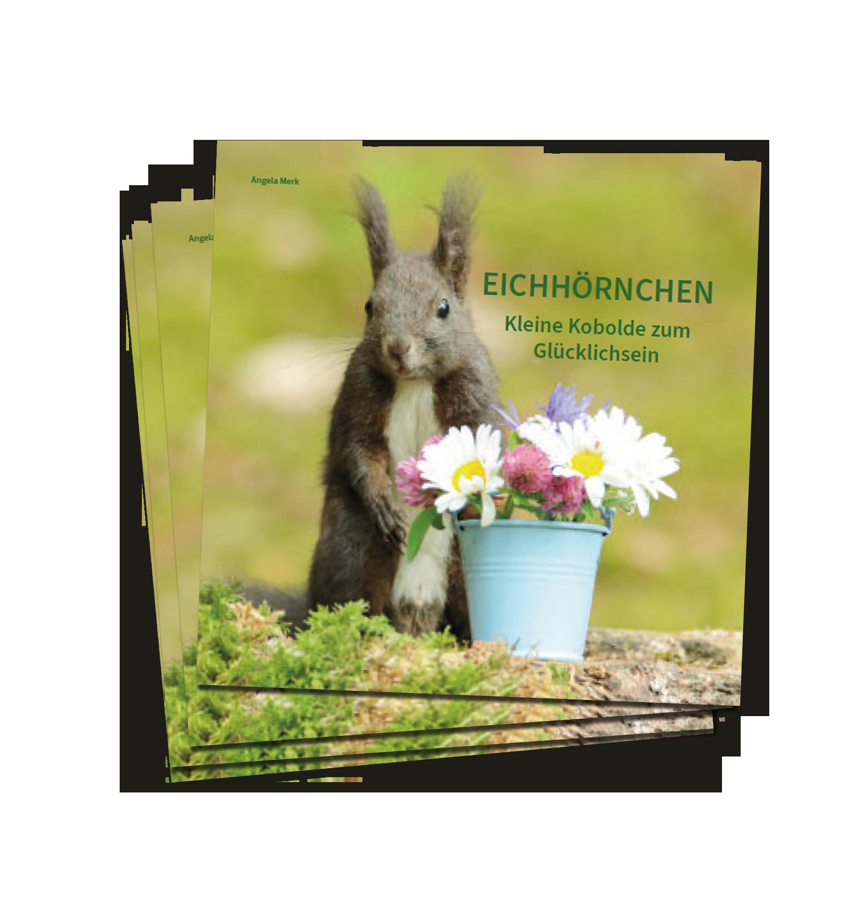 Eichhörnchen Fotobuch kaufen